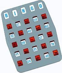 Bingo Fensterschiebekarte 25 aus 75
