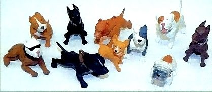 """Houd Hounds"", 12 verschiedene Hunde groß,"